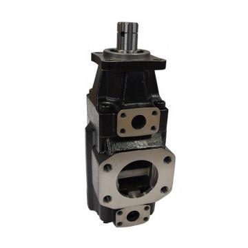 DENISON T6CC-022-014-2R00-C100 vane pump